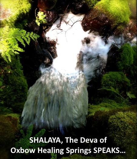Shalaya